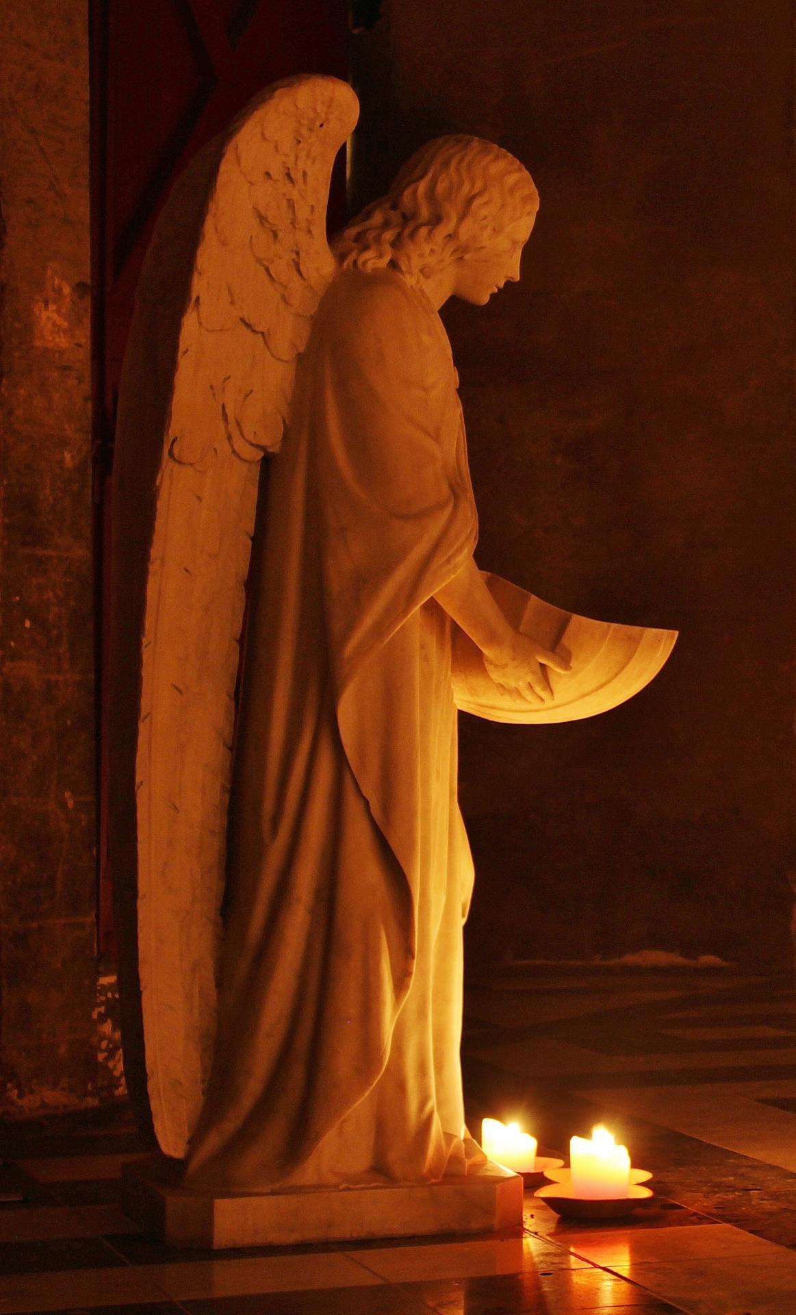 Calais eglise notre dame un ange benitier