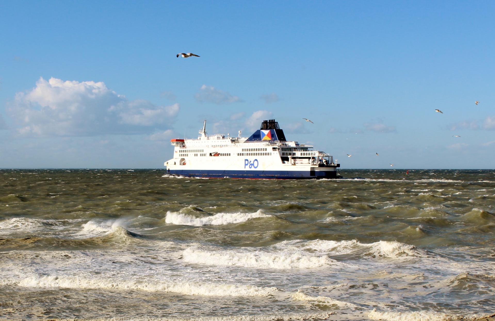Calais top photo navire et mouette