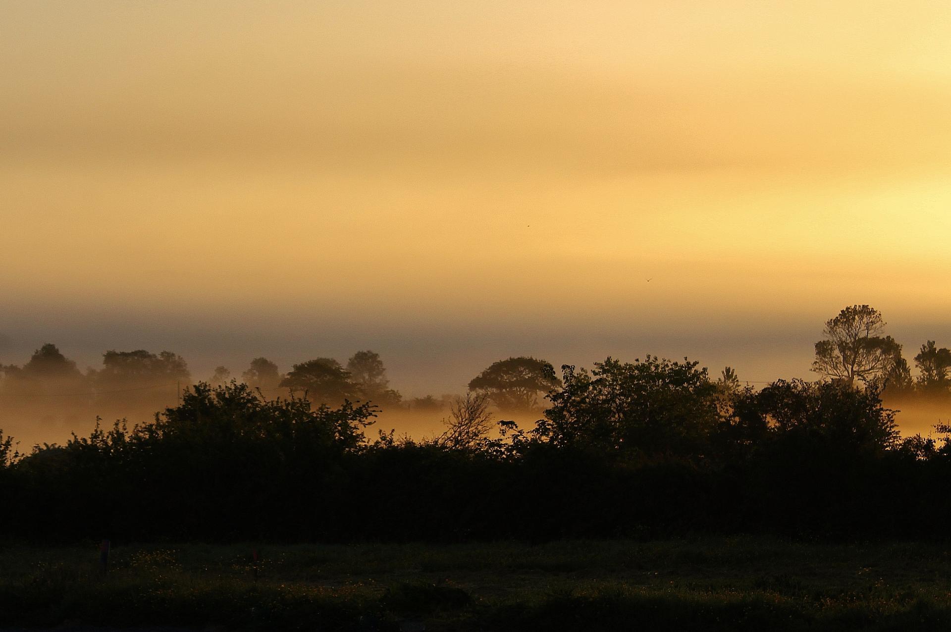 Conteville les boulogne top photo du lever du soleil avec de la brume stagnante