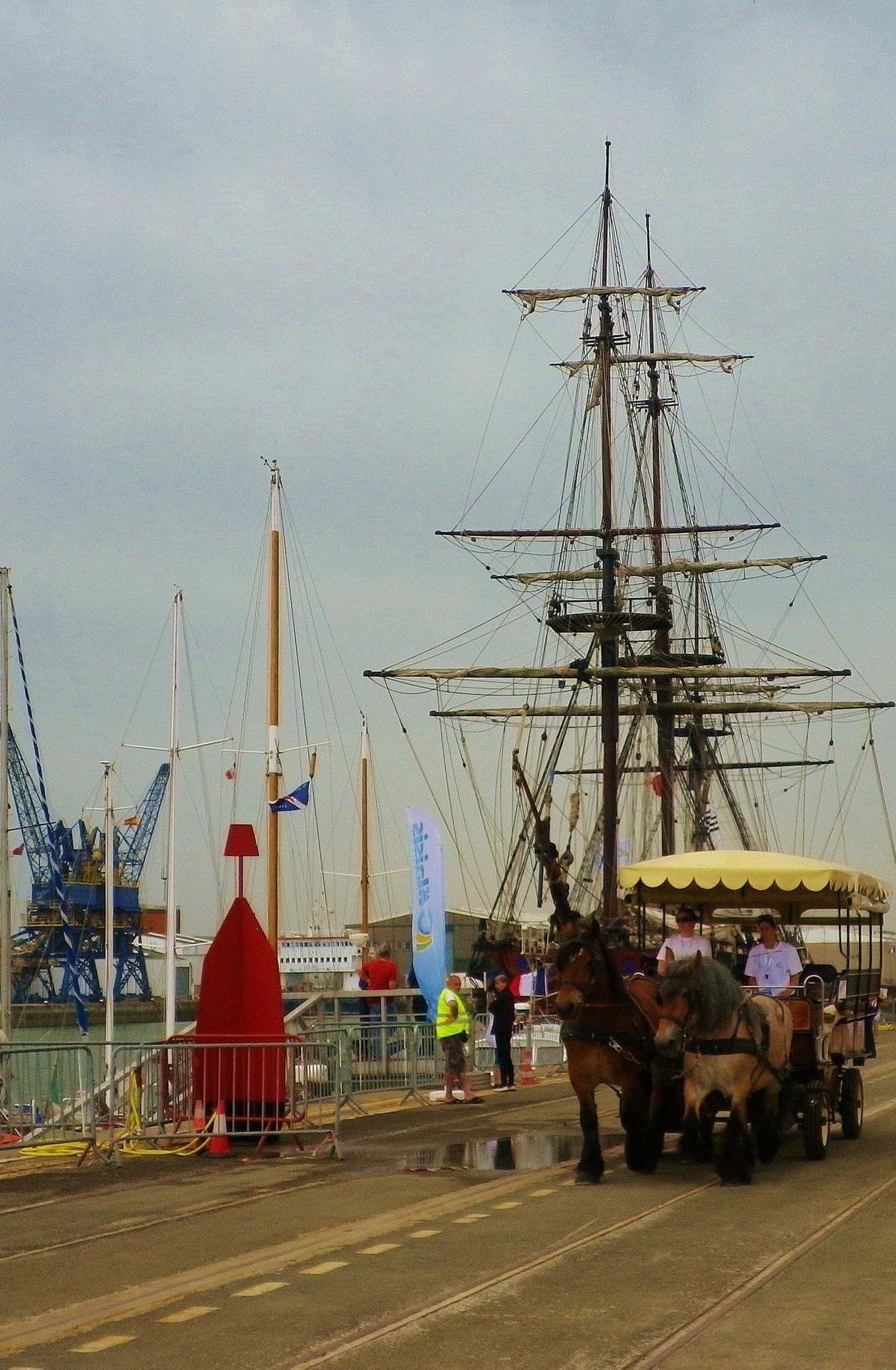 chevaux boulonnais grands bateaux
