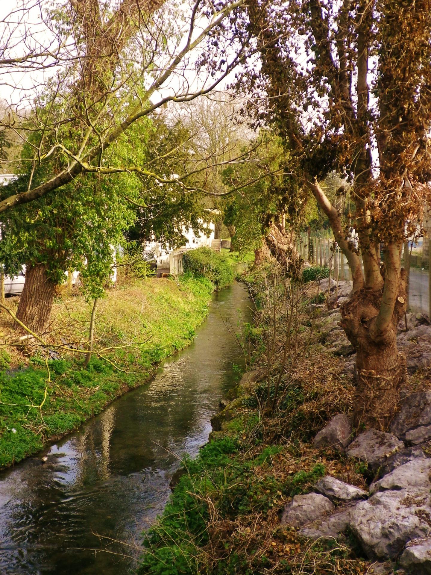 Marquise un coin de la riviere 2