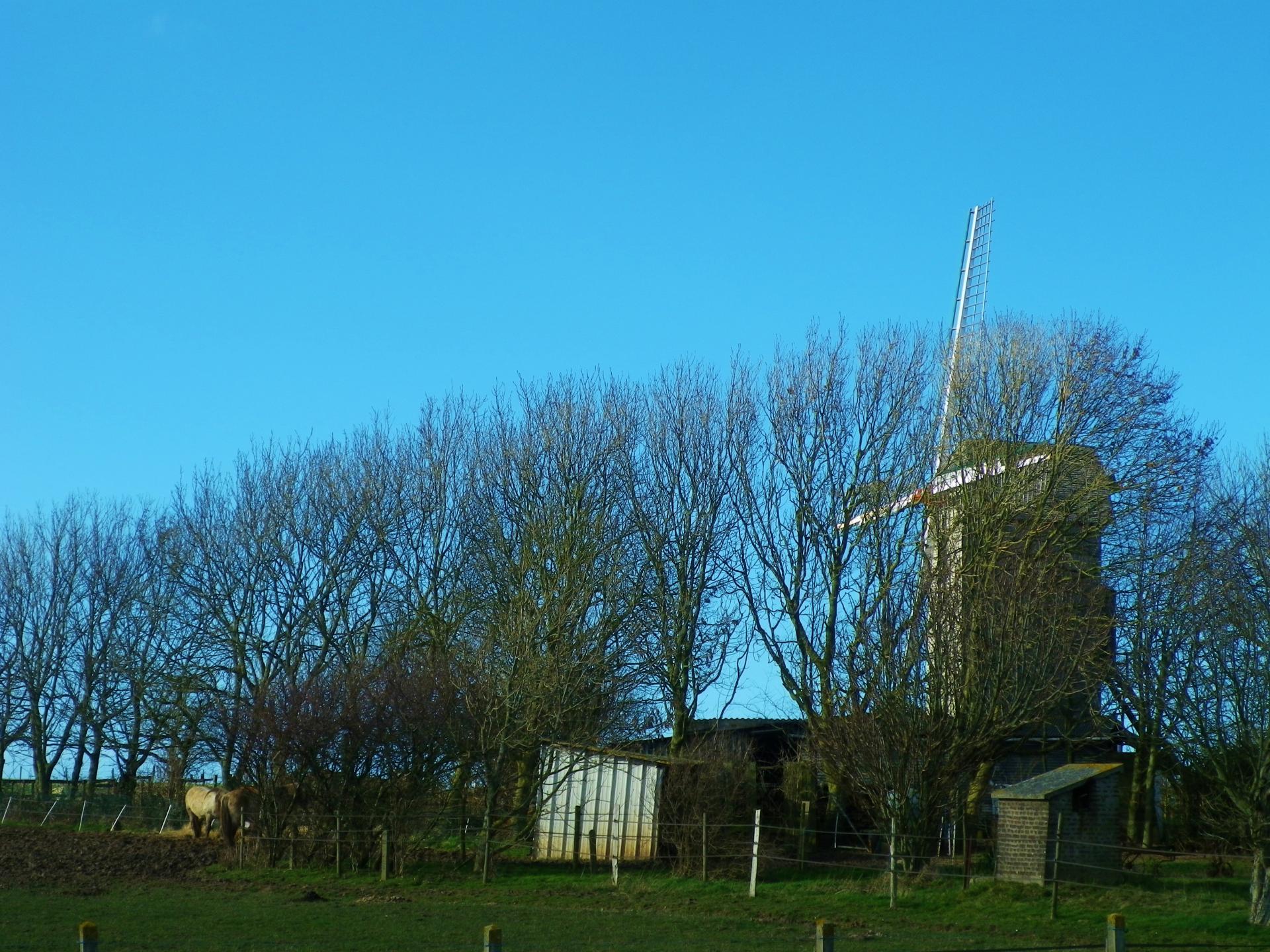 Photographie du moulin de Coquelles